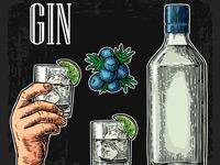 Как пить джин. Подача к столу
