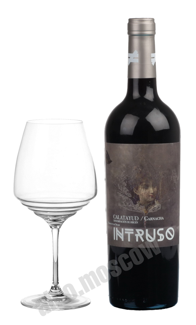 Bodegas Lo Nuevo Bodegas Lo Nuevo Intruso Calatayud Garnacha Tintorera испанское вино Бодегас Ло Нуэво Интрусо Калатайюд Гарнача