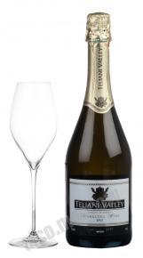 Teliani Valley грузинское игристое вино Телиани Вэли
