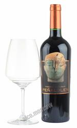 Penalolen Cabernet Sauvignon 2014 чилийское вино Пеньялолен Каберне Совиньон 2014