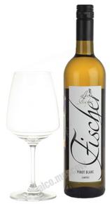 Fischer Pinot Blanc австрийское вино Фишер Пино Блан