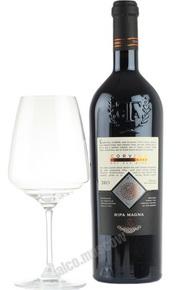 Tinazzi Ripa Magna итальянское вино Тинацци Рипа Магна