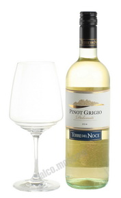Mezzacorona Terre del Noce Pinot Grigio Итальянское вино Терре дель Ноче Пино Гриджио