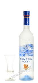 Armenia водка особая Дынная Армения