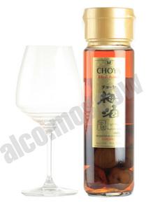 Choya Plum Royal Honey японское вино Чойа Сливовое Роял Хани
