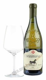 Winiveria Khikhvi грузинское вино Виниверия Хихви